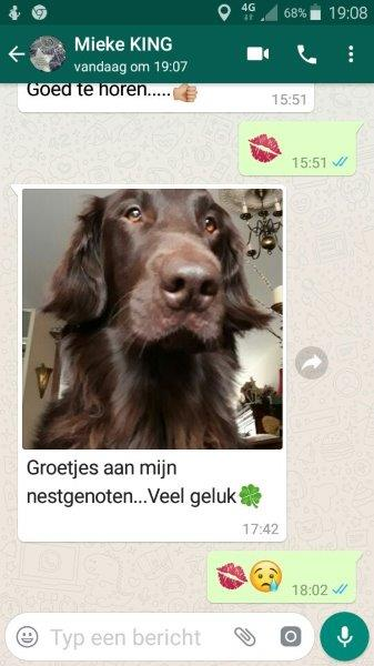 De verslagenheid is groot