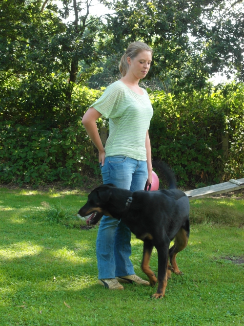 De Beauceron Floyd van collega Emmy en Marlies